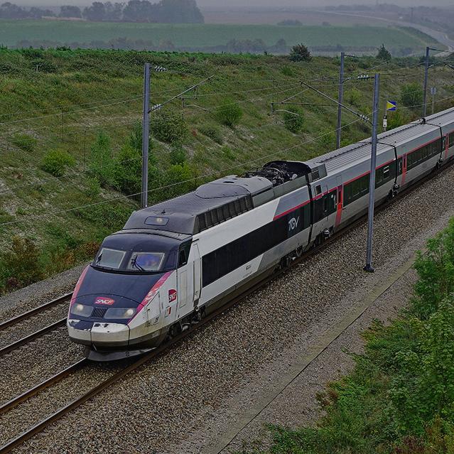 scnf-train